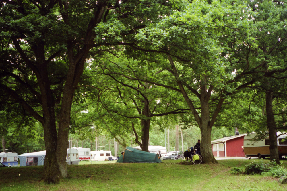 We camped under big trees and hoped there would not be a thunderstorm during the night.